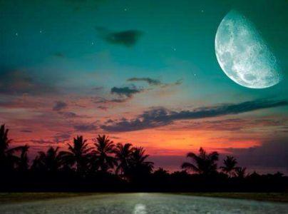 冯至诗歌《南方的夜》